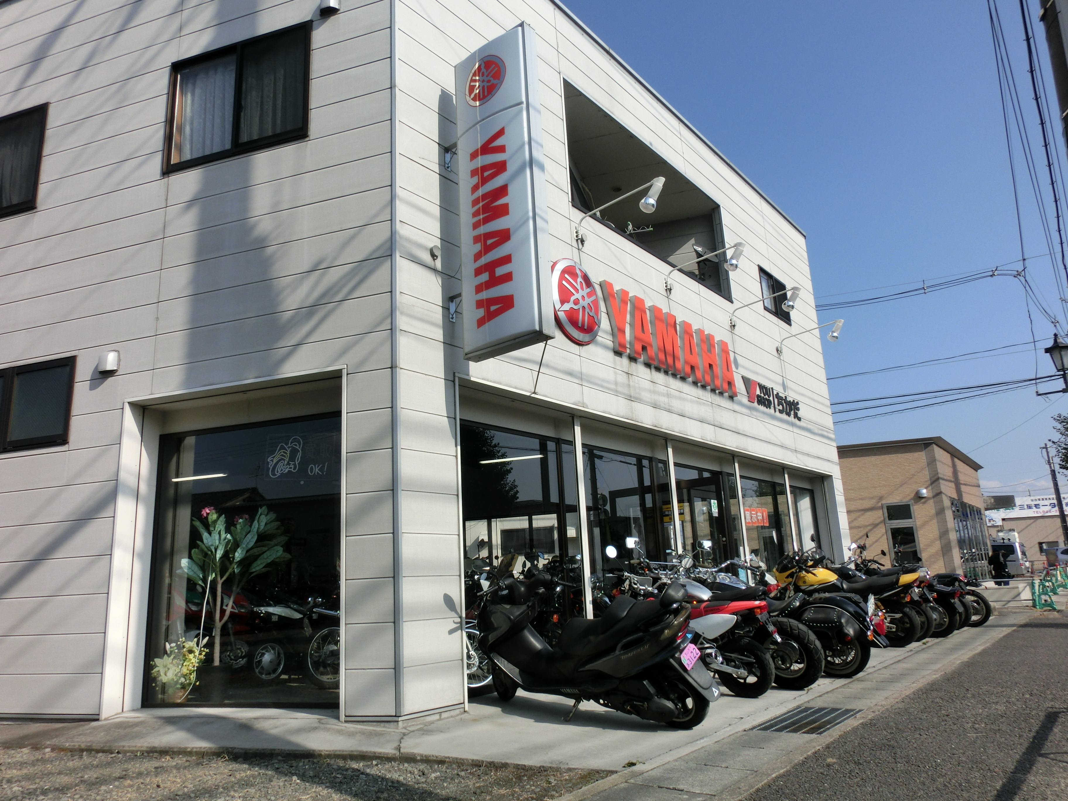 YOU SHOP ちかだバイク専門